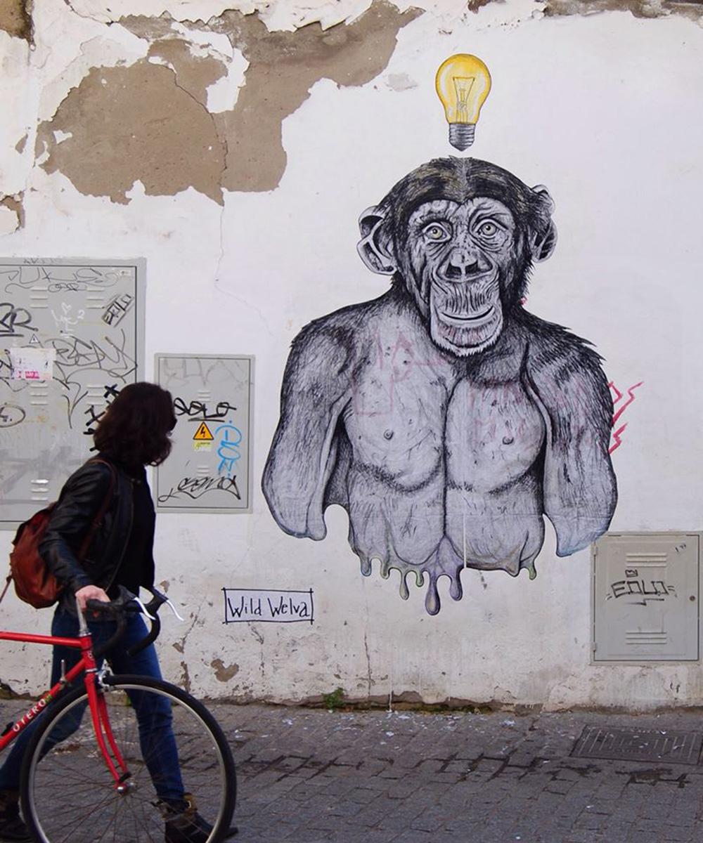 wild welva_scimpanzè
