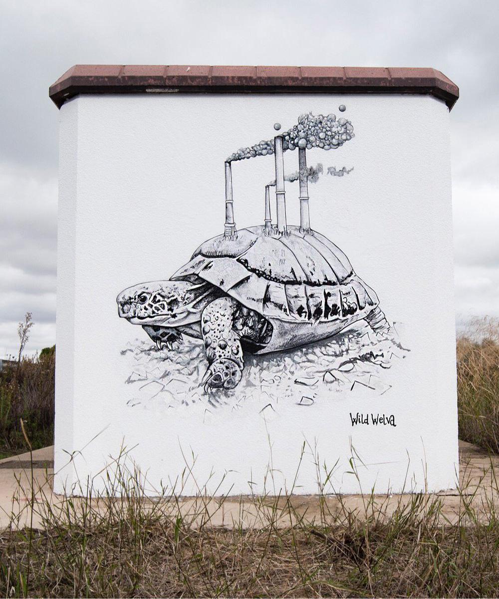 wild welva_tartaruga